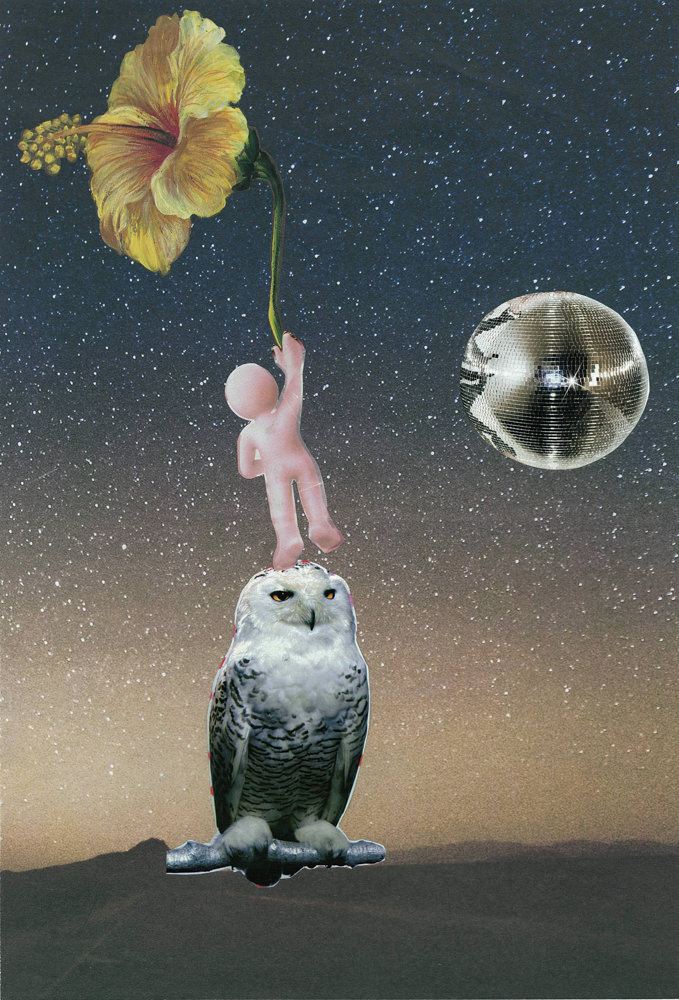 FAF_Opportunities_2014_paper collage_cm 25X37